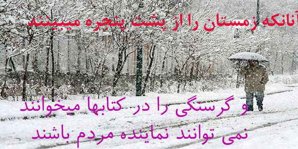 حاج موسی محمدی نماینده مردمی تهران